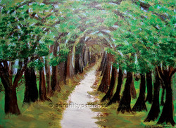 Path of the Trees