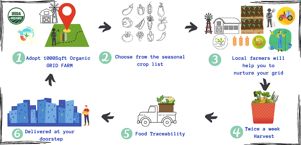 GRID FARMS ill3.png