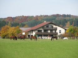 Haus+Pferde
