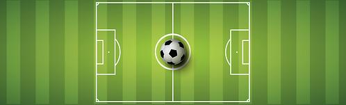 """Skirt - Soccer 29""""x96"""""""