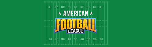 "Skirt - American Football 29""x96"""