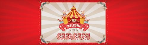"""Skirt - Circus 29""""x96"""""""