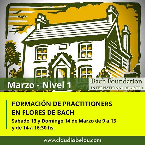 MARZO NIVEL 1 FORMACION DE PRACTITIONERS