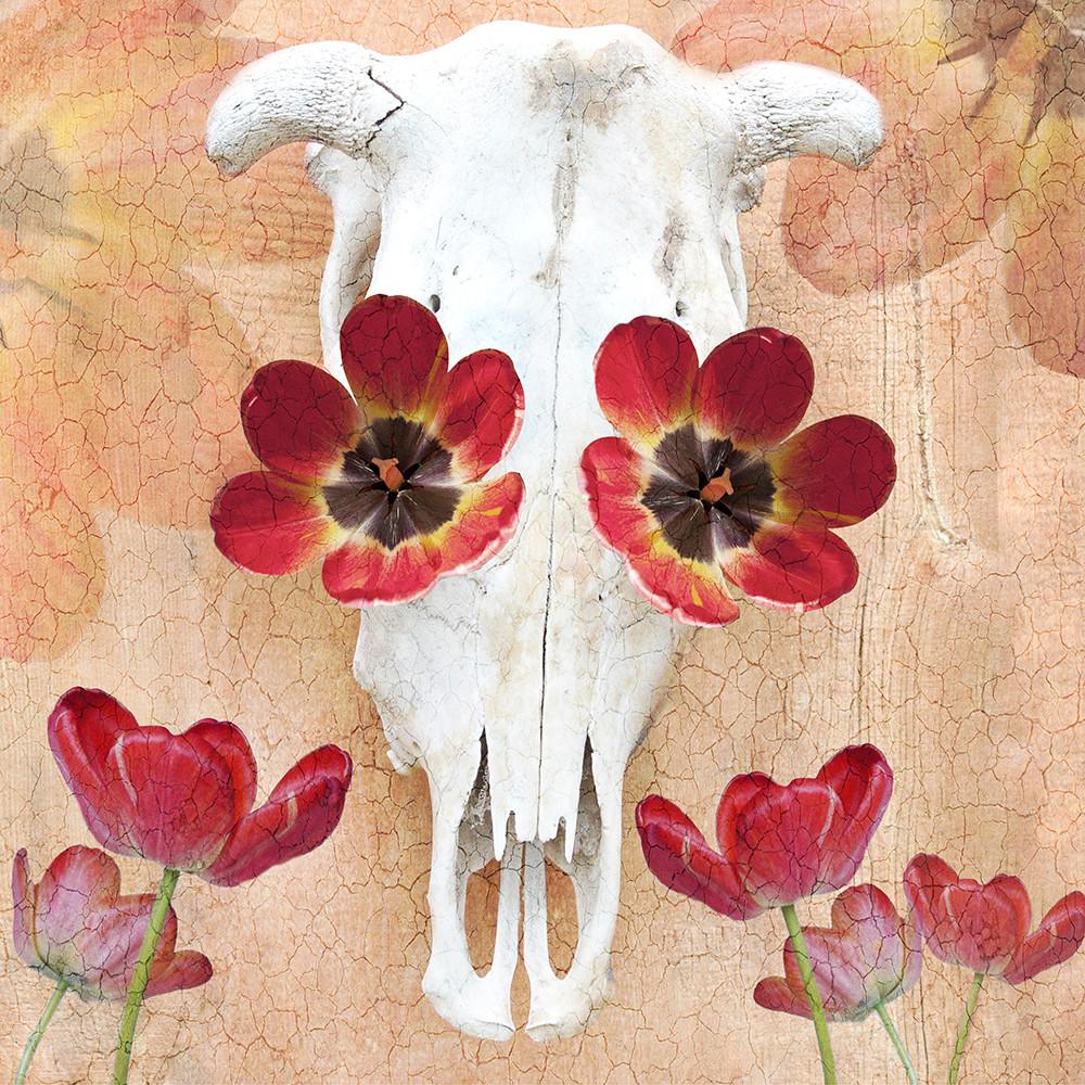 Bull and Tulips