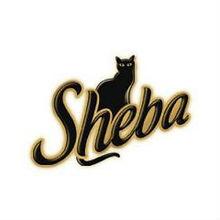 Sheba-Logo-Font.jpg