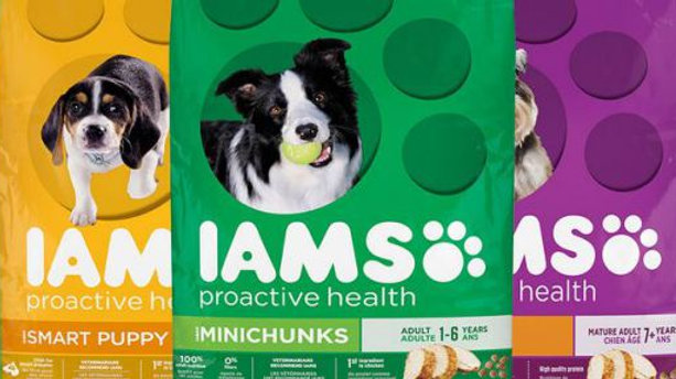 Iams MiniChunk Dog Food 38.5lb
