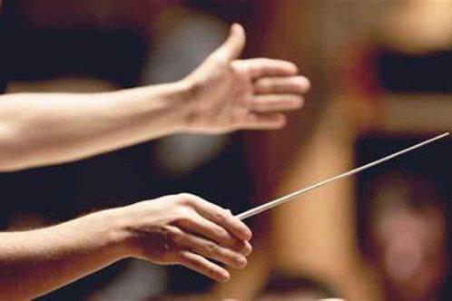 Online Audit: Conducting Intensive