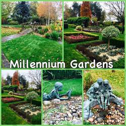 millenium gardens