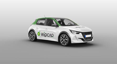 wipcar1.jpg