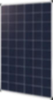 P660GW.jpg