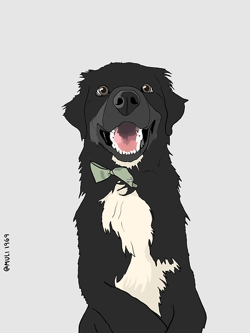 your pet customized illustration