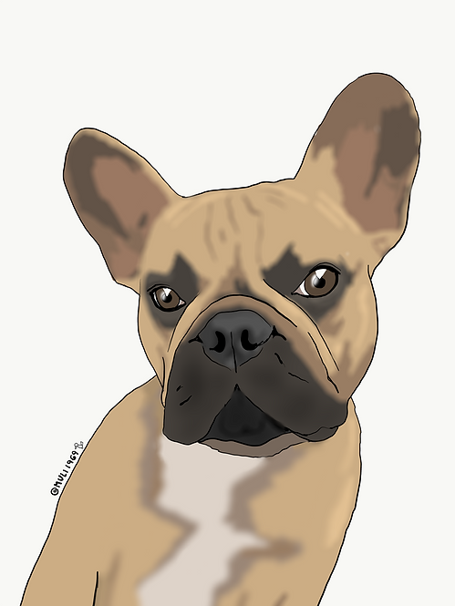 your pet customized illustration