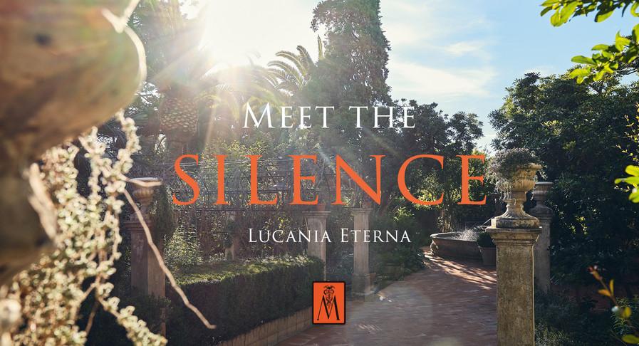 Meet the Silence