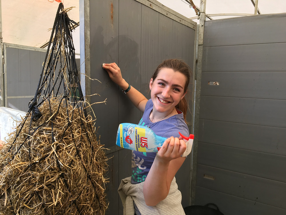 Pheobe and I disinfected the stable thoroughly before Chip was allowed in!