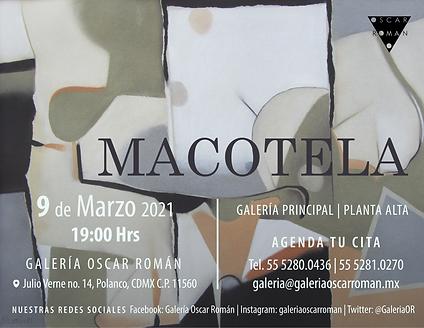 Macotela-03.png