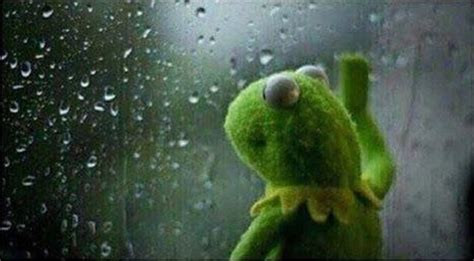 Kermit Gazing Out The Window Into The Rain