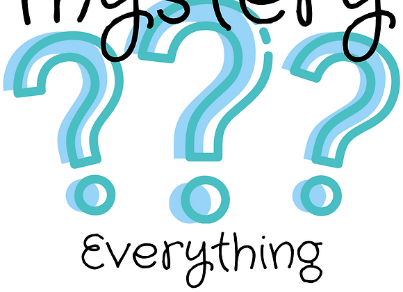 A Little Bit of Everything-MYSTERY BUNDLES