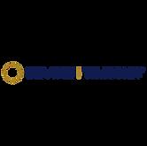 Devine Timony Logo.png