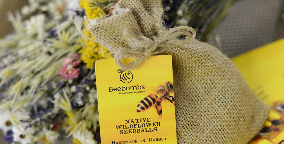 Native Wildflower Beebombs