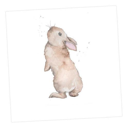 Bertie Bunny's Whiskers Card
