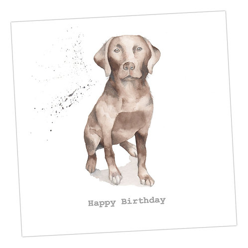Choccie Lab Card