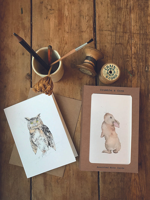 Boxed 'British Wildlife' pack of assorted A6 cards