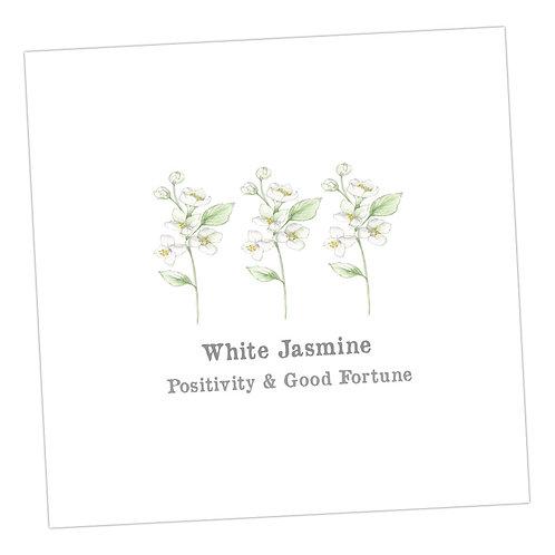 White Jasmine Card