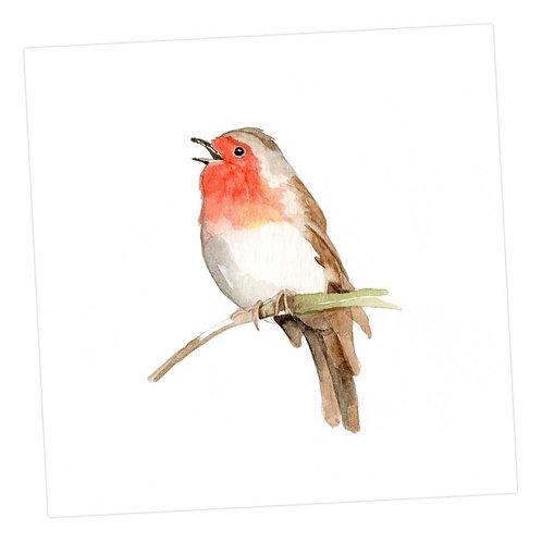 The Robin Card