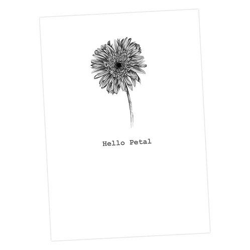 Hello Petal Card