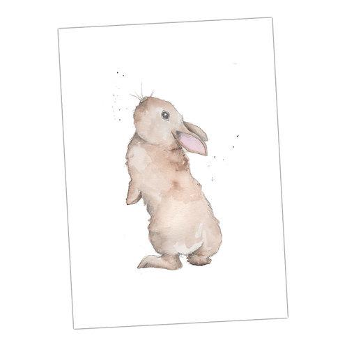 Bertie Bunny Print