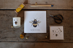 bee card and candle boxed gift