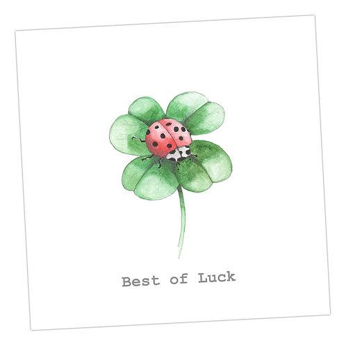 Ladybird Good Luck Card