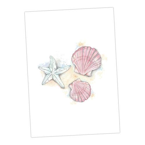 Shell & Starfish Print