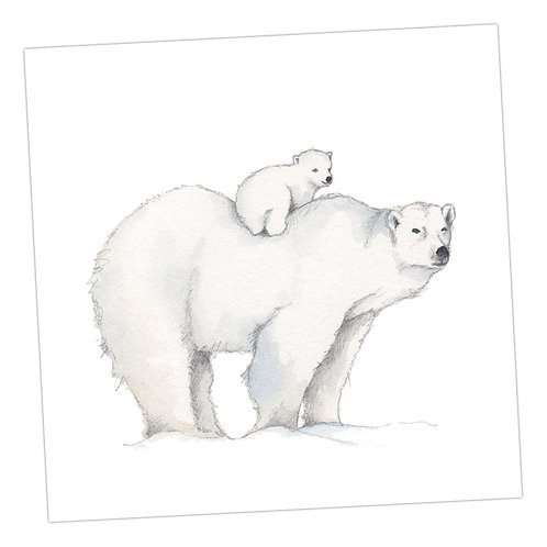 Baby Love Polar Bears Card