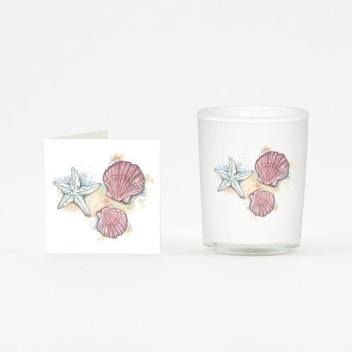 Sea Shells Boxed Candle & Card