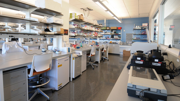 KnipBio Research Lab