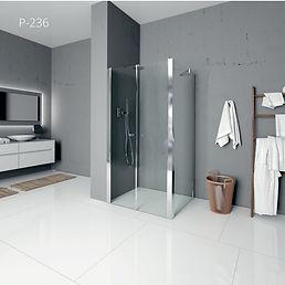 מקלחון פינתי - p236