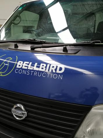 bellbird (5).jpg