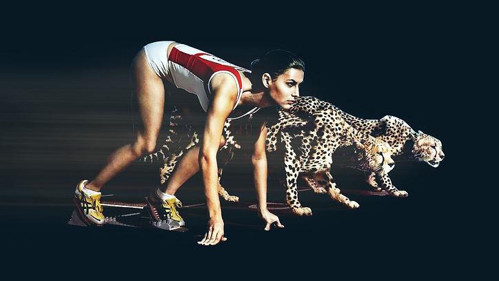 cheetahs-running-1920x1080-41411.jpg