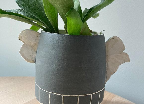 plaid winged black planter