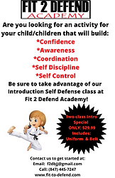 Youth Self Defense Introductory Lessons.png