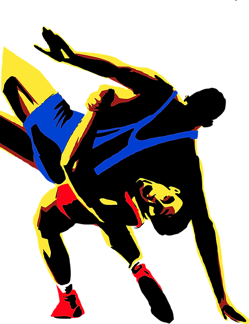 wrestling-1524031_1280.png