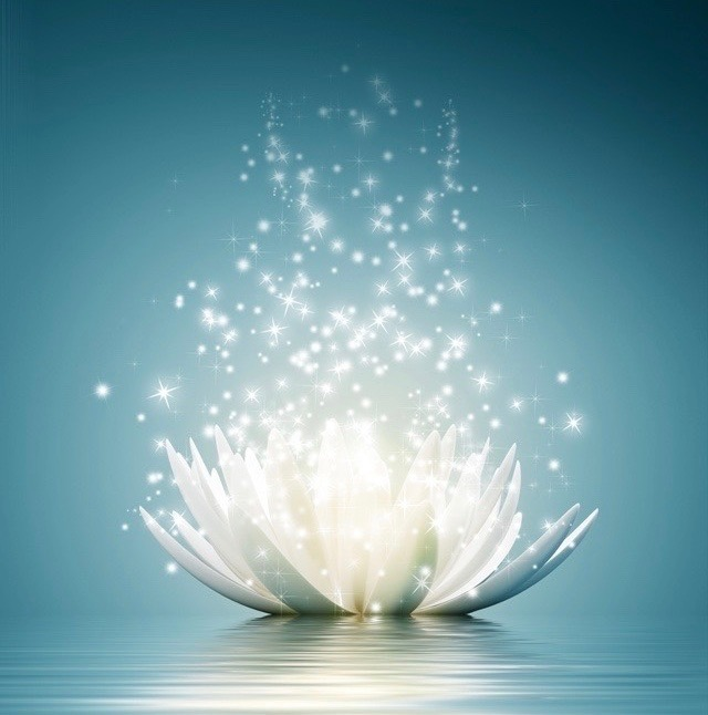 Lotus_bonne_résolution