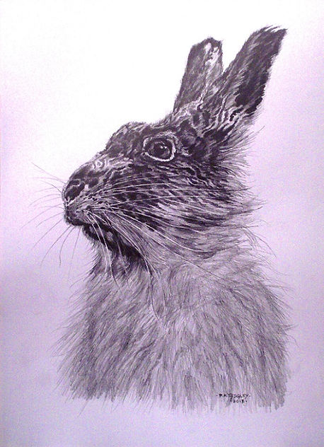 Hare    14.5 x 10.5ins.jpg
