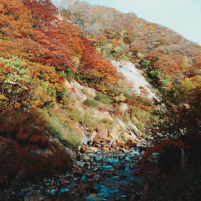 Hiking mount Eboshi.