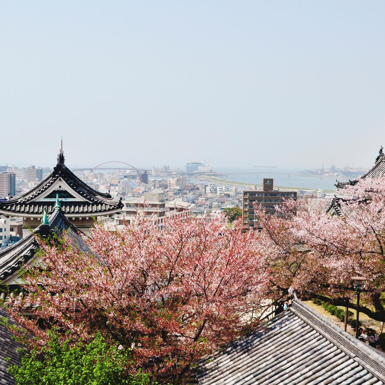 The view on Wakayama city from Wakayama Castle.