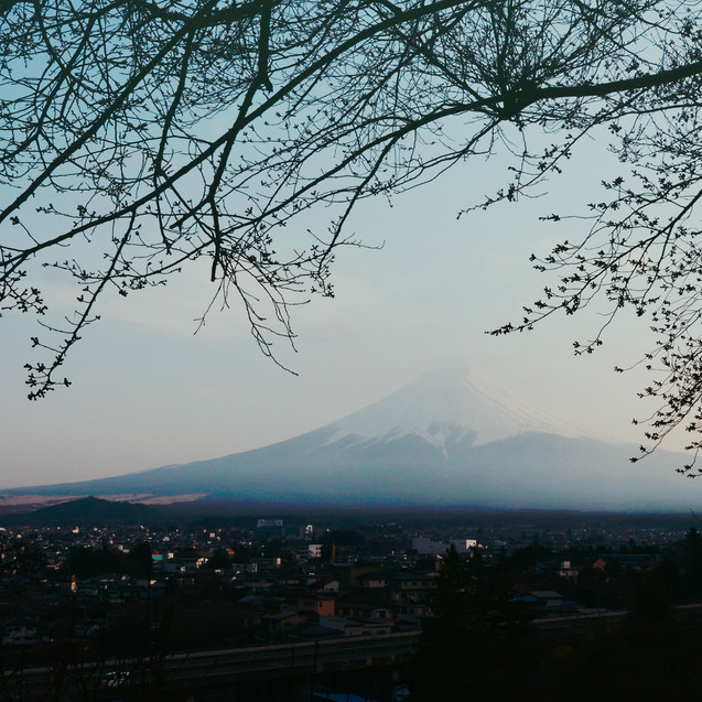 The view on mount Fuji.