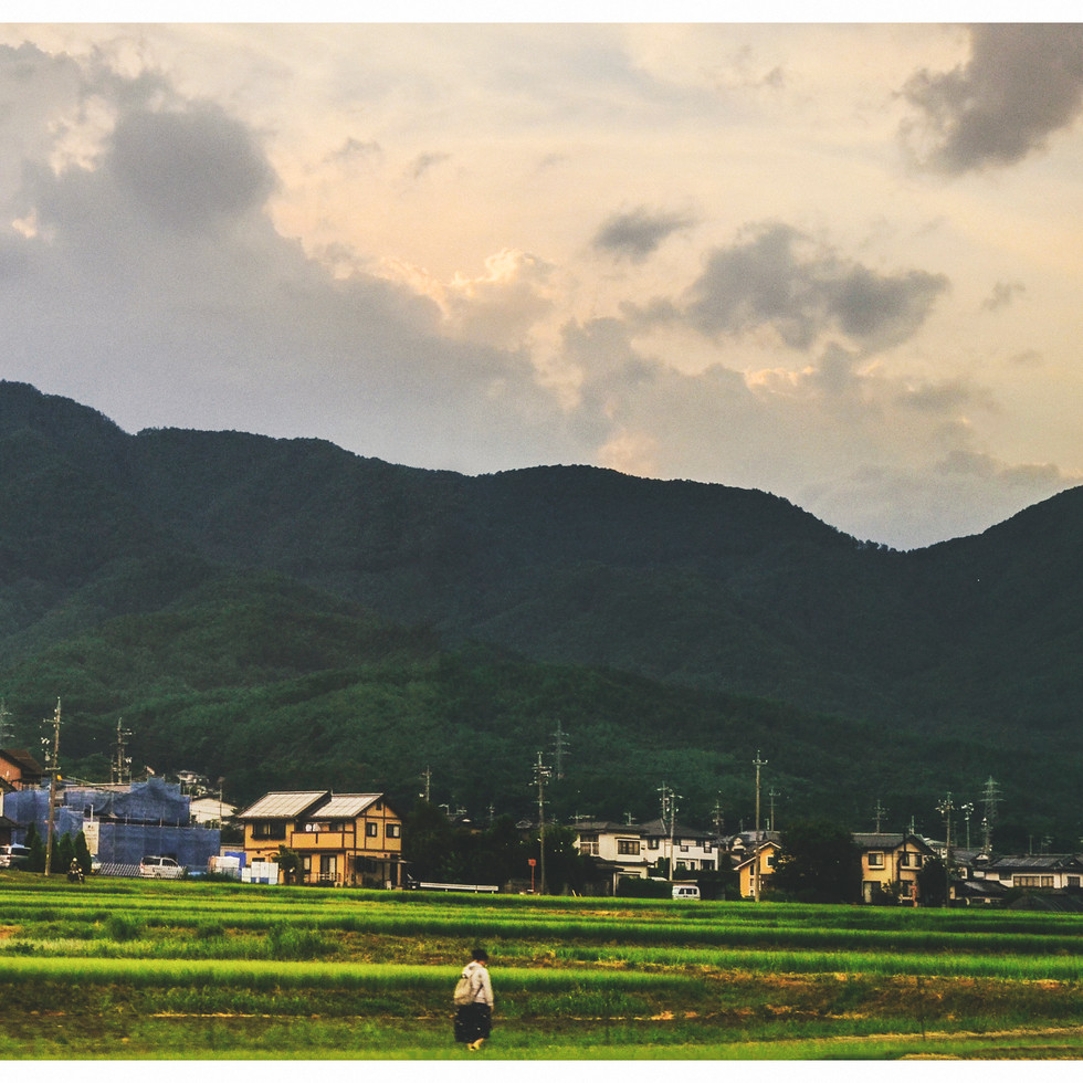 View on rural Nagano from the train.