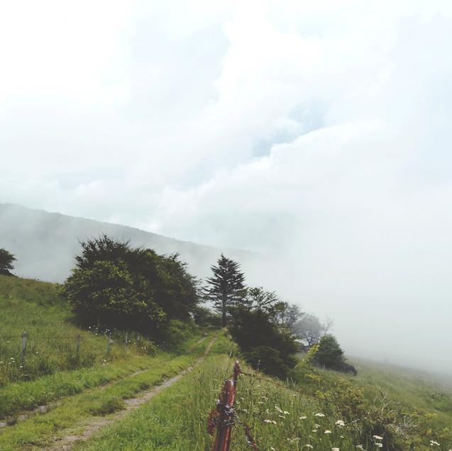 Hiking mount Yatsugatake.