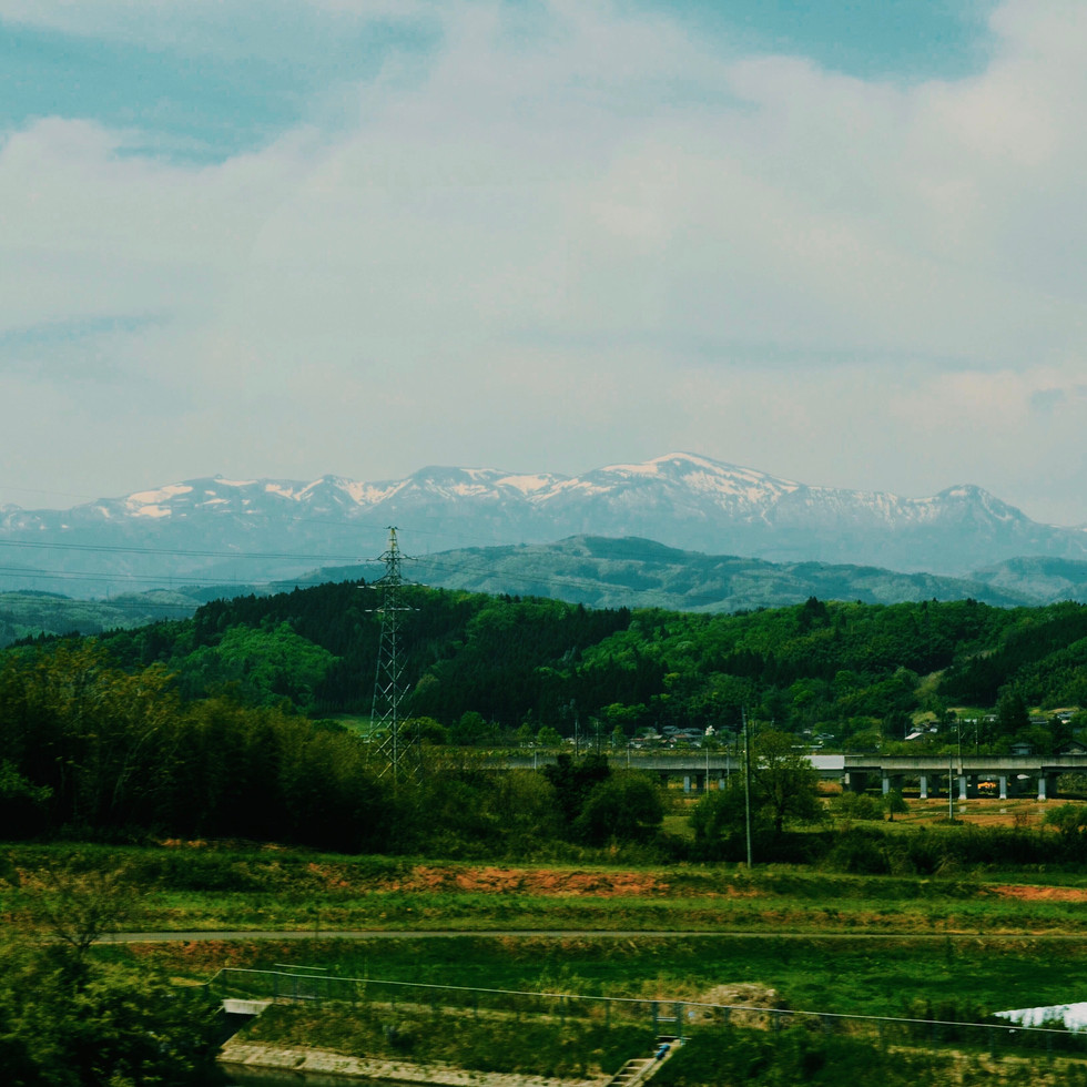 View from the train on mount Adatara.